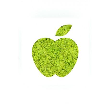 tableau deco pomme pvc