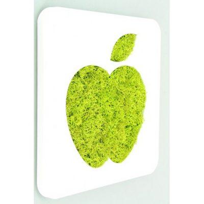 tableau en lichen avec une pomme