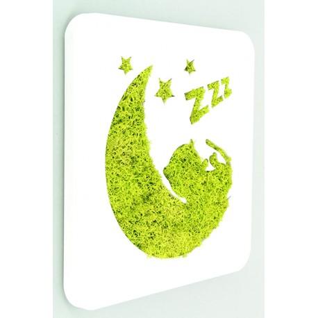 tableau lichen