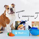 la box pour chien