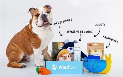 Découvrez la box pour chien !